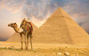 egypt kebab